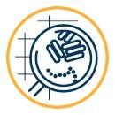Desinfectiemiddelen en hygiënische reinigers