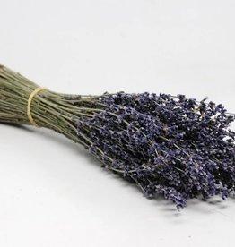 Getrockneter Lavendel ca. 40gr, 25cm