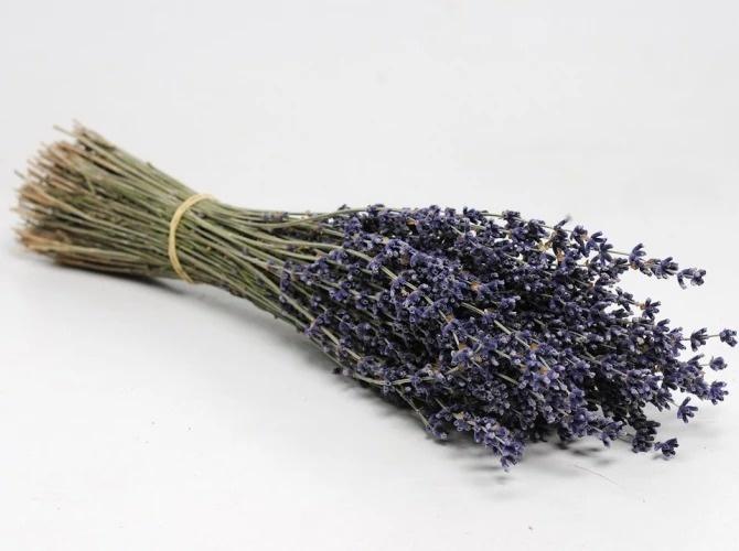Gedroogde lavendel ca. 40gr, 25cm
