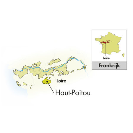 2019 Domaine La Tour Beaumont Haut-Poitou Sauvignon Fié Gris