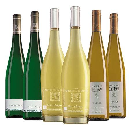 Wine package Asparagus wines