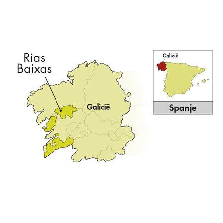 Bodegas Forjas del Salnés Rías Baixas Leirana Albariño 2019