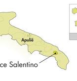 Cantine Due Palme Cantine Due Palme Salice Salentino Selvarossa 2016
