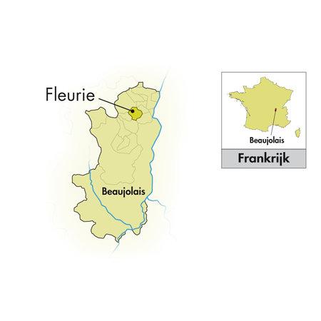 Jean-Paul Brun Terres Dorées Beaujolais Fleurie 2018/19