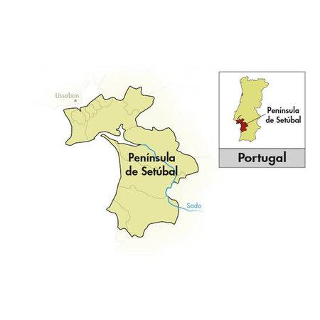 Ficada Península de Setúbal Rosé 2020