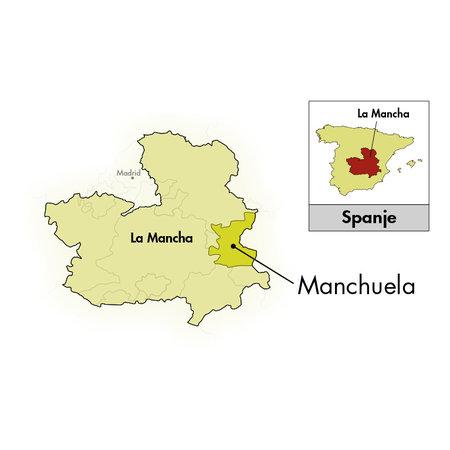 Bodegas Ponce Manchuela PF Viñas Viejas Bobal 2019