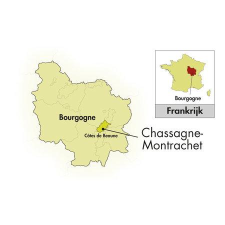 Domaine Bouard-Bonnefoy Chassagne-Montrachet 1er cru Les Chenevottes 2019