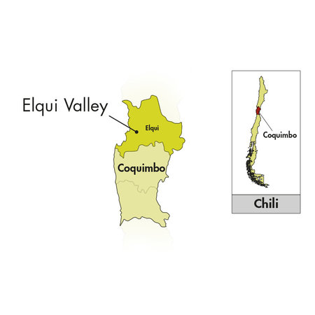 Viña Falernia Elqui Valley Carmenère Gran Reserva 2018