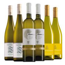 Sample package of asparagus wines