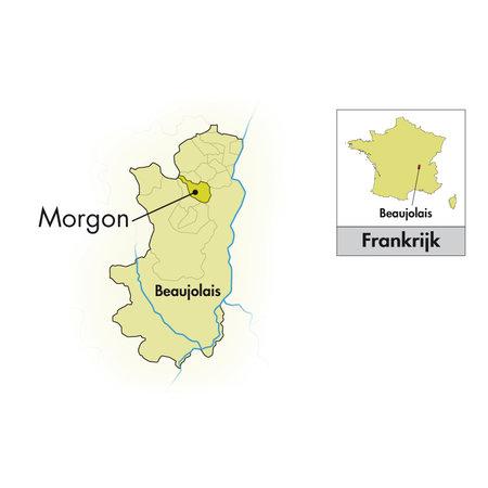 Jean-Paul Brun Terres Dorées Beaujolais Morgon 2019