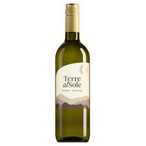 Terre Al Sole Salento Pinot Grigio Bianco