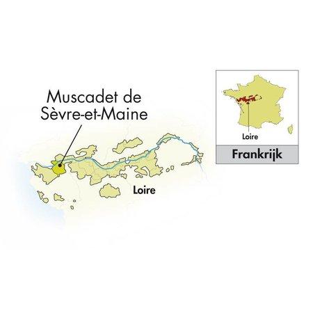 2017 Domaine de la Grange Muscadet Sèvre and Maine sur lie
