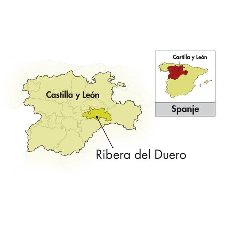 2016 Bodegas Rodero Ribera del Duero 9 meses