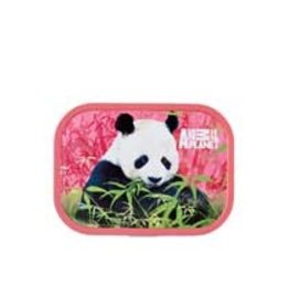 ANIMAL PLANET LUNCHBOX ANIMAL PLANET MEPAL PANDA