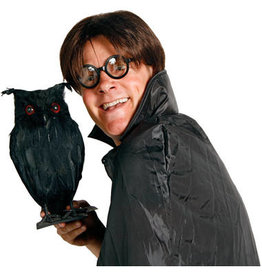 HALLOWEEN BRIL HARRY POTTER STIJL