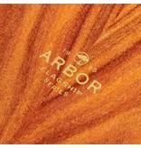 ARBOR ARBOR PERFORMANCE COMPLETE CRUISER, FLAGSHIP ZEPPELIN