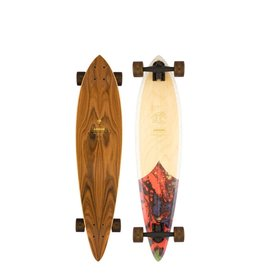 ARBOR ARBOR PERFORMANCE COMPLETE LONGBOARD, GROUNDSWELL FISH