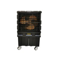 Master Climate Solutions MASTER AIR COOLER BC120 12000 M3-U