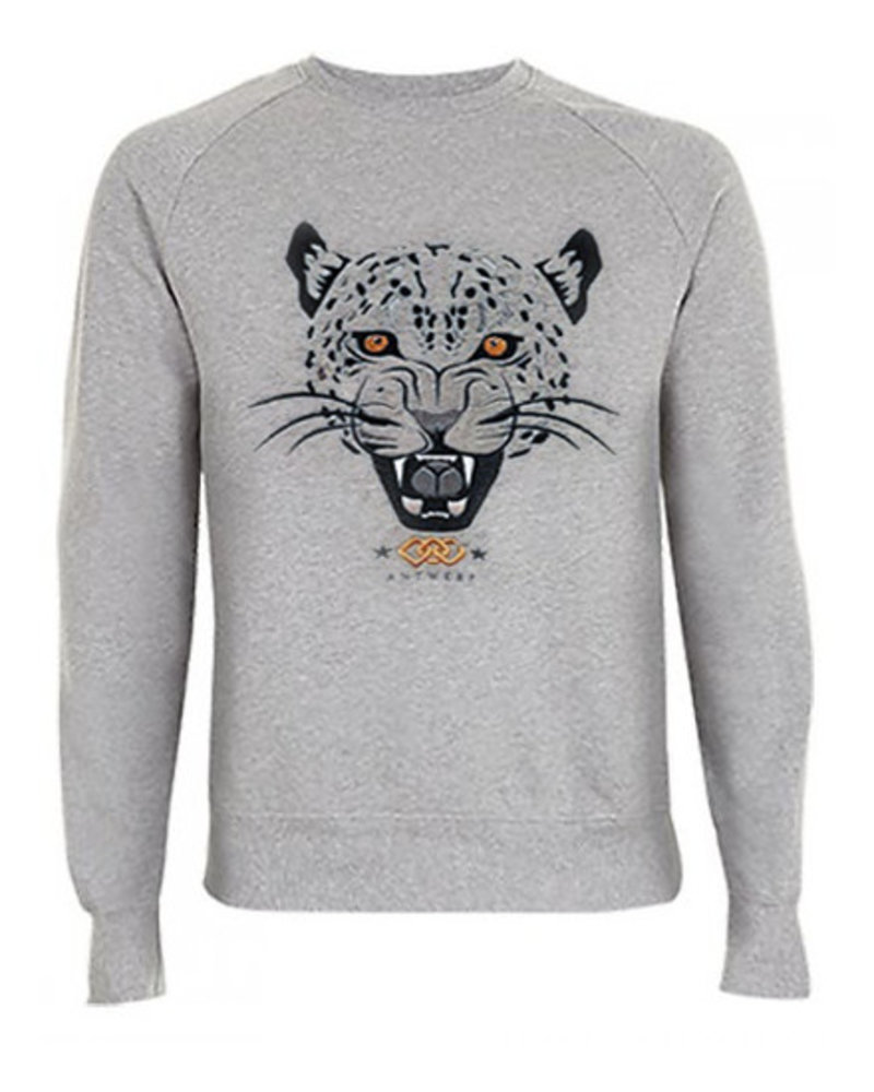 DOPE ON COTTON Sweater Jaguar Antwerp