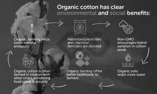 EARTH POSITIVE organic cotton