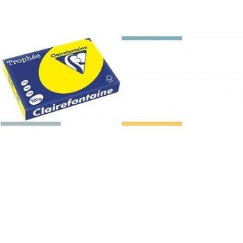 Clairefontaine gekleurd papier Trophée A4 120gr/250vel - dennengroen