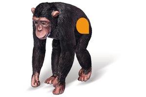 Ravensburger Tiptoi Chimpansee