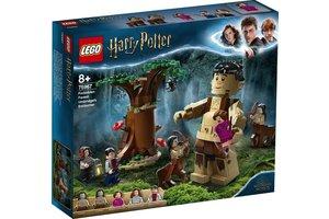 LEGO LEGO Harry Potter - Het Verboden Bos Omber's ontmoeting met Groemp 75967