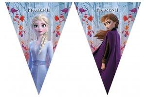 Disney Frozen 2 - Vlaggenlijn 2m