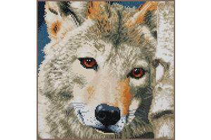 Verachtert Diamond Painting Kit - Wolf