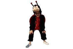 Kostuum Pluche Lieveheersbeestje