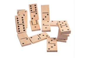 Groot Domino Spel