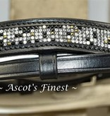 Ascot's Finest  Mini-Shet zwart rundlederen hoofdstel