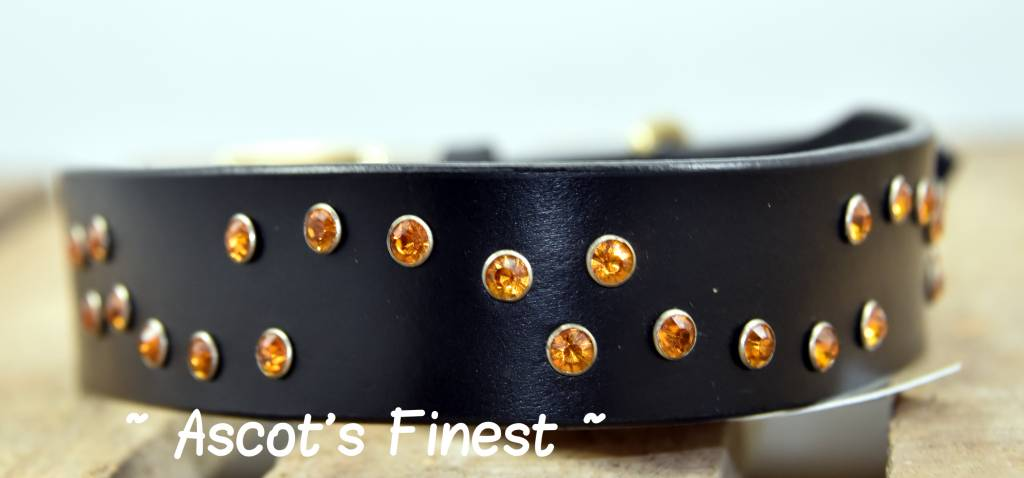 Ascot's Finest Zwart rundleer breed met oranje strass - 55 cm
