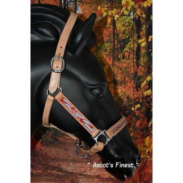 Rundlederen halster uitgesneden en met kleur - Full, Cob en Pony