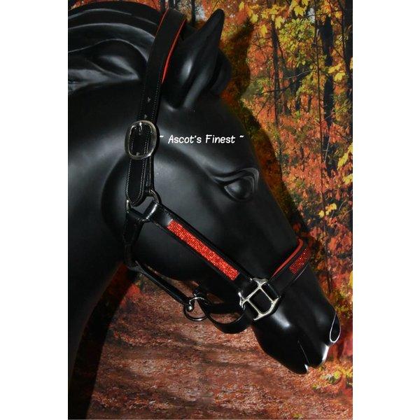 Lederen halster met rood - Pony t/m XFull