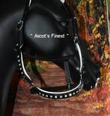 Ascot's Finest Zwart lederen halster Shetland t/m Full