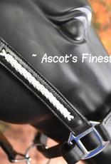 Ascot's Finest Rundlederen halster met wit vlechtwerk