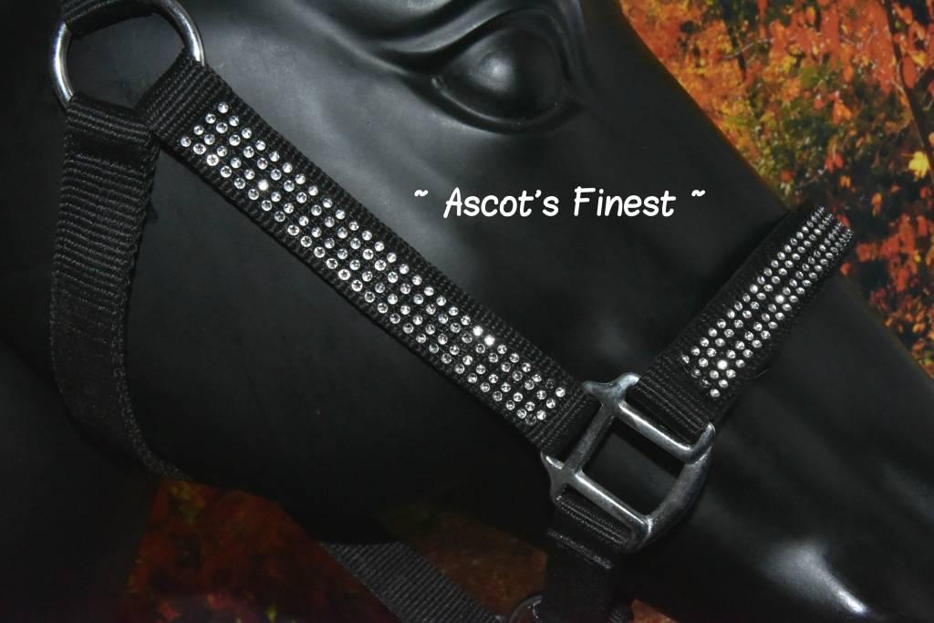 Ascot's Finest Nylon halster met strass - Van Shet tot XFull