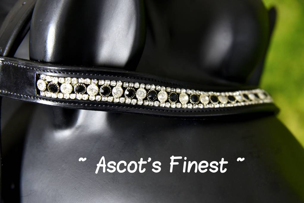 Ascot's Finest Zwart rundlederen hoofdstel met aparte neusriem - XFull en Full