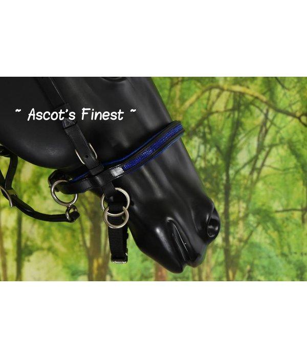 Ascot's Finest Rundlederen Bitloos Hoofdstel - Blauw