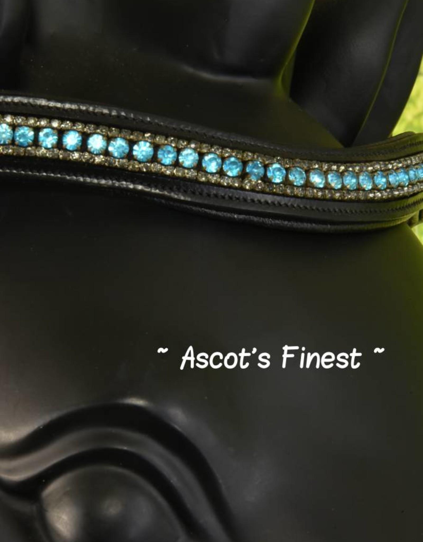 Ascot's Finest Zwart rundleer - turquoise frontriem - Full