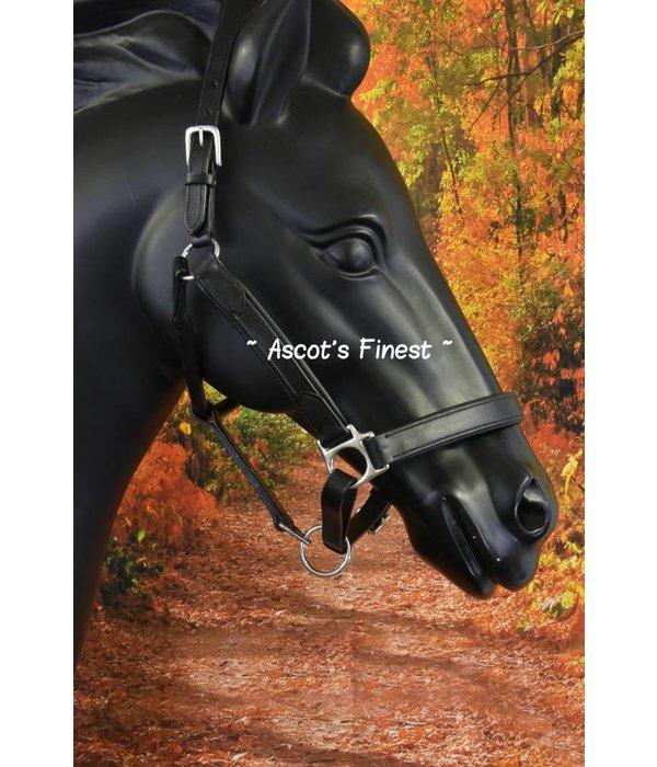 Ascot's Finest Zwart rundlederen halster - Full