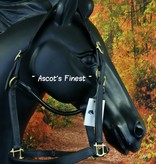 Ascot's Finest Zwart rundleer - Cob
