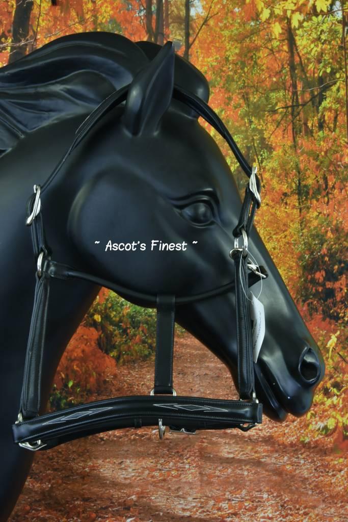 Ascot's Finest Zwart rundleer met wit stiksel - Full