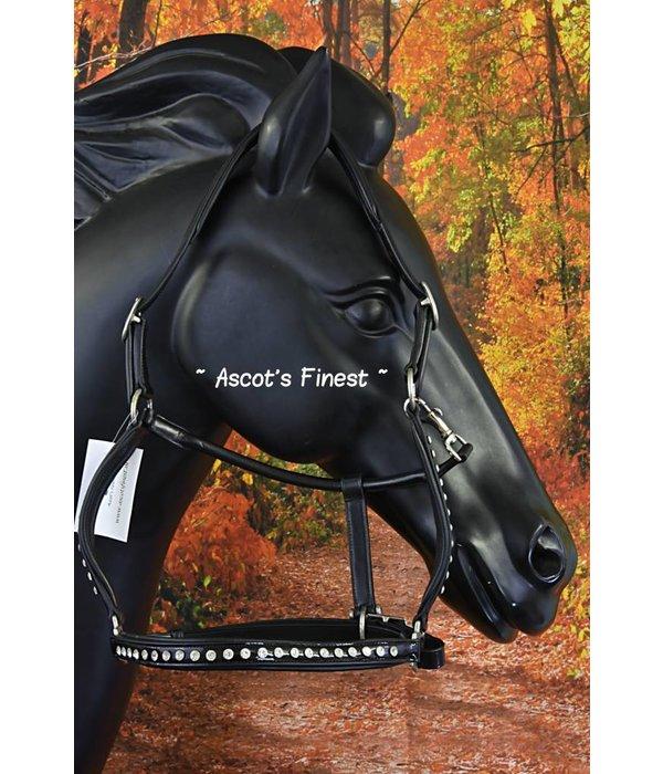 Ascot's Finest Zwart lak en strass - Cob