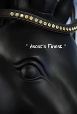 Ascot's Finest Bruine frontriem gele strass stenen - 41,5 cm - Full