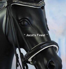 Ascot's Finest Rondgenaaid stang en trens hoofdstel