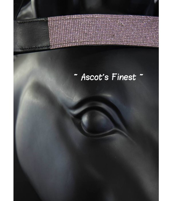 Ascot's Finest Frontriem - Roze