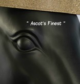 Ascot's Finest Frontriem - Goud
