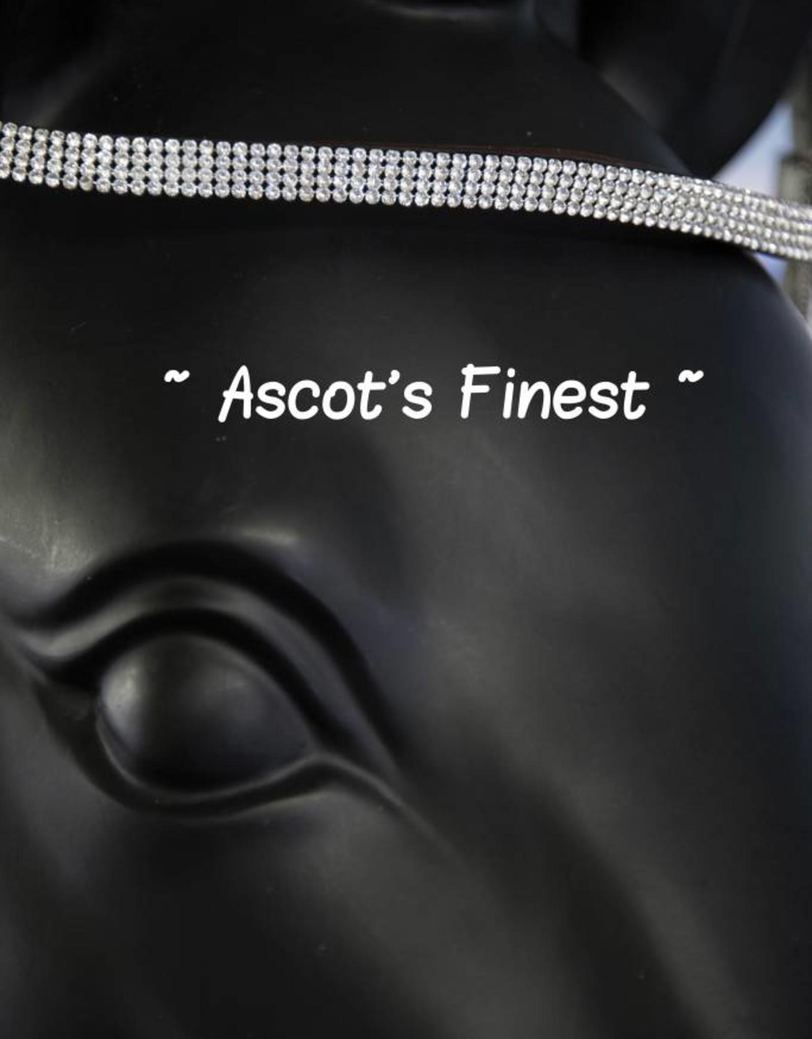 Ascot's Finest Bruin met 4 rijen witte strass stenen - 43,5 cm - ruime Full